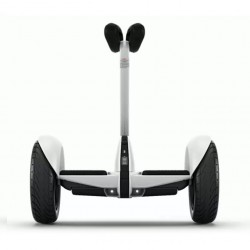 Patinete Scooter eléctrico...