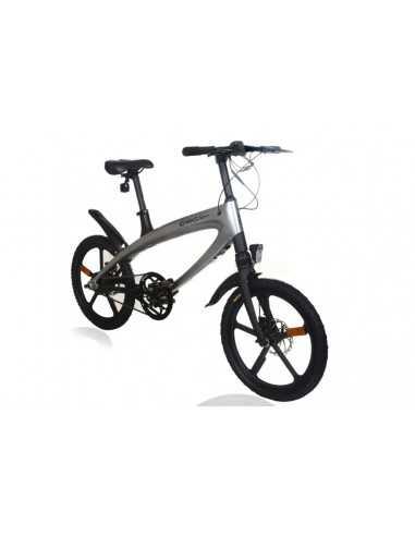 Bicicleta electrica Alfa