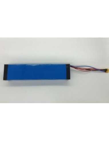 Batería ICe Q1 48V – 10Ah